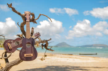 Ukulele Kala Hawaiian Islands and Tattoo