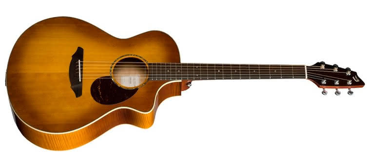 BREEDLOVE - Passport PLUS C250/SFe