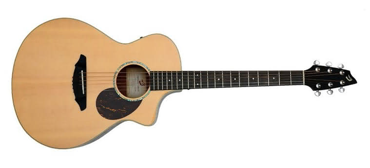 BREEDLOVE - Passport PLUS C250/SBe