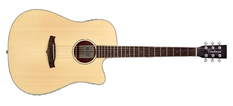 TANGLEWOOD - Premier Deluxe TPE DC DLX