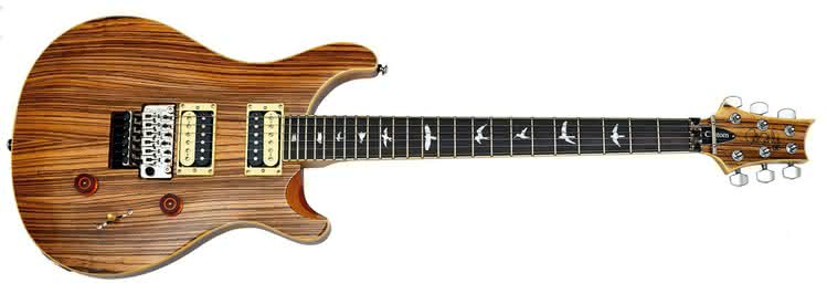 PRS - Exotic SE Custom 24 Floyd