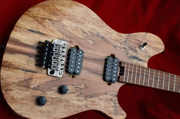 EVHWolfgang WG Standard Exotic Spalted Maple